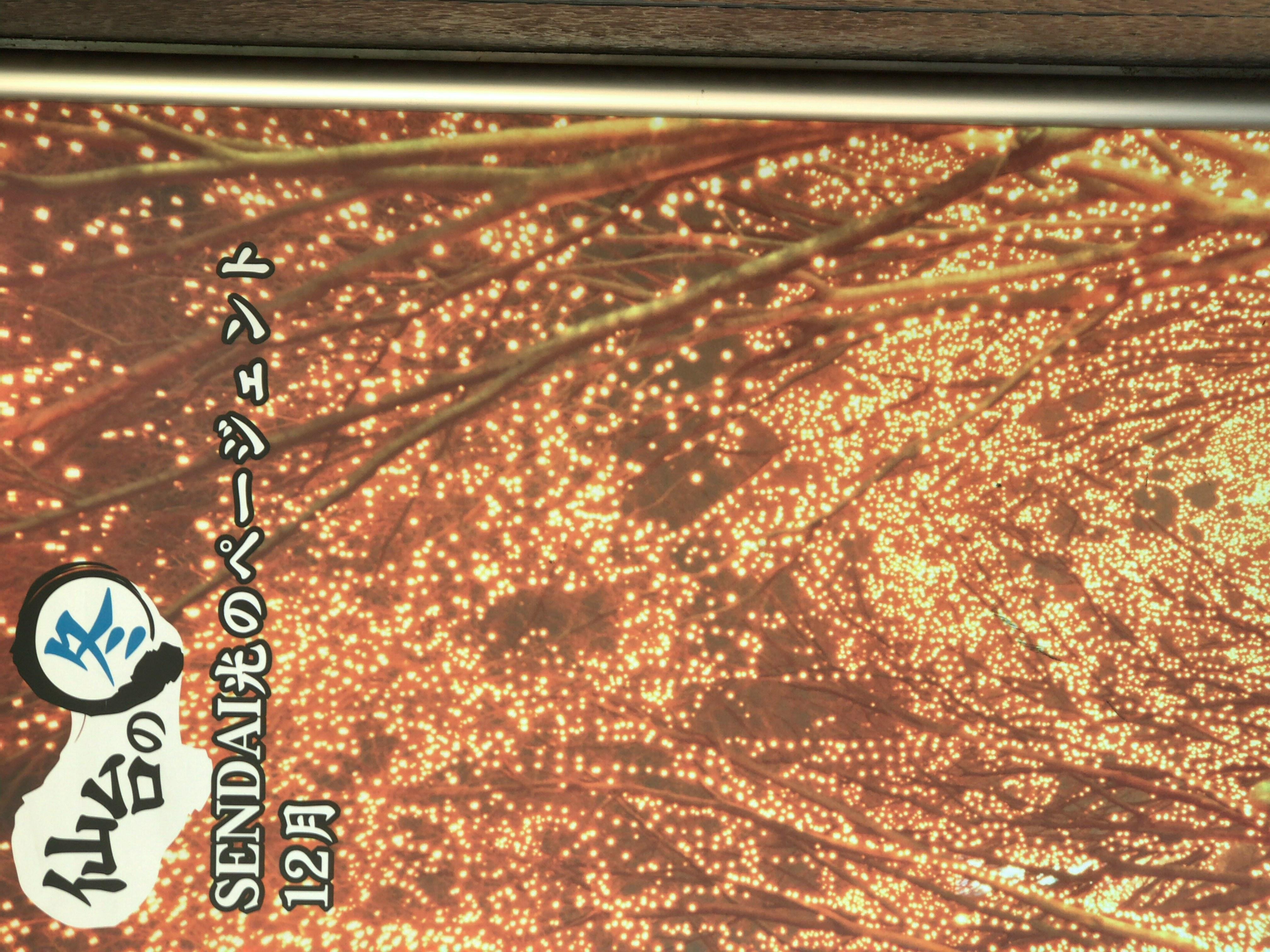 【新卒ブログ】私用があり地元に帰ってきている中、ブログを書いています。……とても寒いです???????(川島)