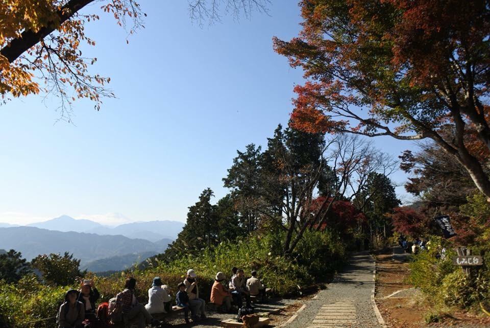 【新卒ブログ】都内の紅葉ももうすぐ見納め・・(山口)